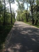Selling a plot of 10 acres in Severinovka, 19 km from Kiev